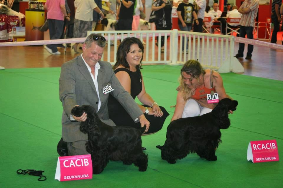 FALLING IN LOVE CACIB CHAMPIONNAT DE FRANCE 2014 19